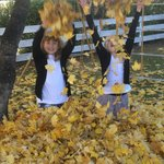  Playing in the leaves at Albert Town Lodge