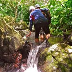 Waking and climbing  trough water on forest ...is so fresh and nice!