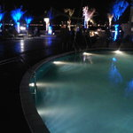 the pool by the bar