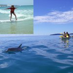 Rainbow Beach Surf Centre & Dolphin Kayaking