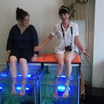 Alleviate Fish Spa