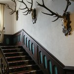  Stairway with antlers