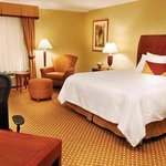  Hilton Garden Inn Gilroy Hotel One King Room