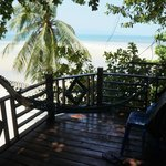  View to the beach from the tree house
