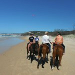 Rainbow Beach Horse Rides