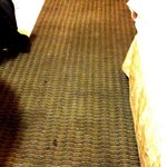The carpet as you walk into the room! If only you could smell it over the internet.