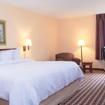 Hampton Inn Tampa-Veterans Expwy - King Room