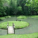  Island and pond May 8, 2013
