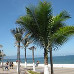  The view of Malecon