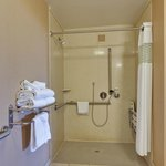 ADA Rollin Shower Bathroom