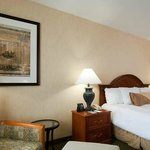  Hilton Garden Inn Milpitas Hotel One King Study