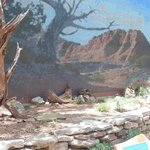  Sentinel of the Canyon tile mural