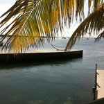 Here's a view from their own little island of the pier where you can do yoga in the mornings.
