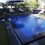  The beautiful pool- clean, cool and deep!