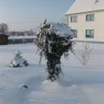  Garten im Winter