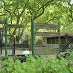  Parque infantil D. Carlos