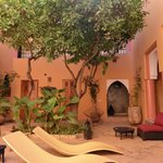  Orange Tree in the little Riad