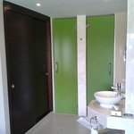  Modern Rooms are Nicer than Home (Split Shower/Toilet Rooms)