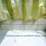  Moldy and torn shower curtain.