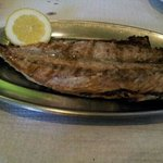 Grilled Mackerel.. Fresh & Tasty.