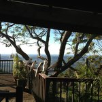 Foto de Tamborine Mountain Bed & Breakfast