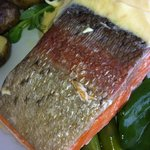  Rainbow trout on plate