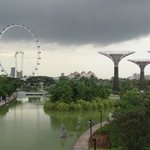 gardens by the bay with the singapore flyer during the day