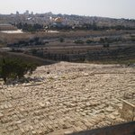 Old City Jerusalem from Mt of Olives