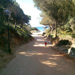  Downhill path to the beach