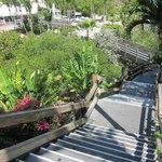 going down the stais (101 steps) to the pool and beach area