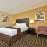 Deluxe guest suite with one king bed