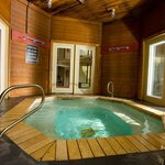  Jacuzzi Hot Tub