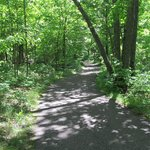  Lake Bemidji Trail