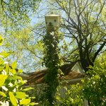 Bird House, one of many, at Cottage Grove Inn