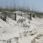  The Dunes at Myrtle Beach State Park