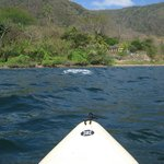  View from one of the Kayak&#39;s