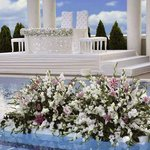  Pool Terrace Wedding