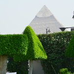 Pyramid shaped trees in the gardens