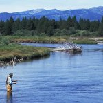  Fly Fishing Madison River
