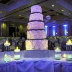 Winter Wonderland Wedding - Park Plaza Bloomington