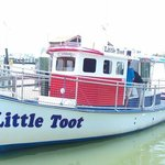 Little Toot Dolphin Adventures Foto