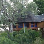 Ulusaba Safari Lodge