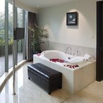 Executive Suite Modern Tower Bathtub