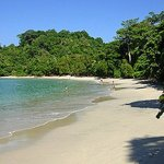 Manuel Antonio National Park Beach Shore