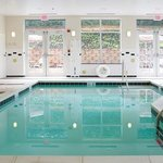 Indoor Heated Pool & Jacuzzi