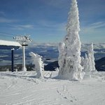Schweitzer Mountain Resort Lodging resmi