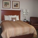 Queen Bed Studio Suite