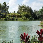  Resort Grounds - Lagoon