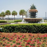 Charleston's Waterfront Park