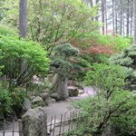  Japanese garden tranquility